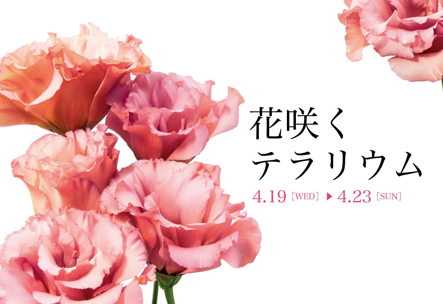 花の香りに包まれる春満喫イベント「花咲くテラリウム」